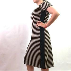 Karen Kane tan and black striped bodycon dress L